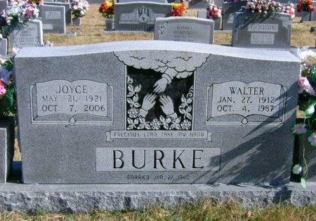 BURKE, WALTER - Scott County, Tennessee | WALTER BURKE - Tennessee Gravestone Photos
