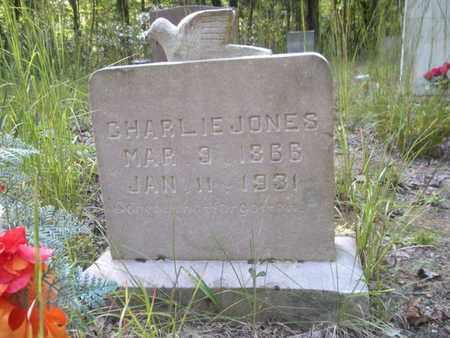 JONES, CHARLIE - Scott County, Tennessee | CHARLIE JONES - Tennessee Gravestone Photos