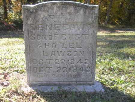 LAWSON, GENE DAVID - Scott County, Tennessee | GENE DAVID LAWSON - Tennessee Gravestone Photos