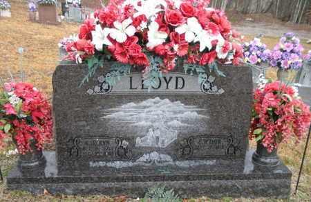 LLOYD, CAROLYN - Scott County, Tennessee   CAROLYN LLOYD - Tennessee Gravestone Photos