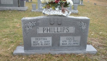 PHILLIPS, BERTHA - Scott County, Tennessee | BERTHA PHILLIPS - Tennessee Gravestone Photos