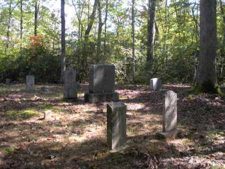 *YORK CEMETERY, OVERVIEW - Scott County, Tennessee | OVERVIEW *YORK CEMETERY - Tennessee Gravestone Photos