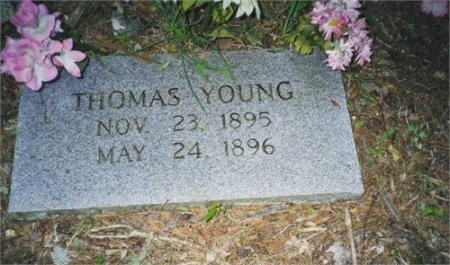 YOUNG, THOMAS - Scott County, Tennessee   THOMAS YOUNG - Tennessee Gravestone Photos