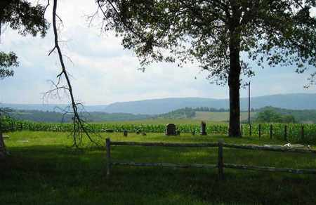 *HATFIELD OVERVIEW,  - Sequatchie County, Tennessee |  *HATFIELD OVERVIEW - Tennessee Gravestone Photos