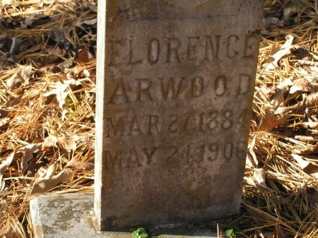 ARWOOD, FLORENCE - Sevier County, Tennessee | FLORENCE ARWOOD - Tennessee Gravestone Photos