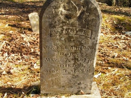 ARWOOD, NANCY E. - Sevier County, Tennessee   NANCY E. ARWOOD - Tennessee Gravestone Photos