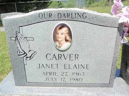 CARVER, JANET ELAINE - Sevier County, Tennessee | JANET ELAINE CARVER - Tennessee Gravestone Photos