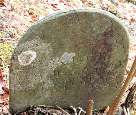 DISON, RHODA - Sevier County, Tennessee | RHODA DISON - Tennessee Gravestone Photos