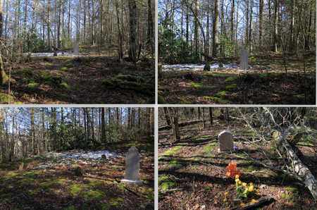 *DOCK GREEN OVERVIEWS,  - Sevier County, Tennessee |  *DOCK GREEN OVERVIEWS - Tennessee Gravestone Photos