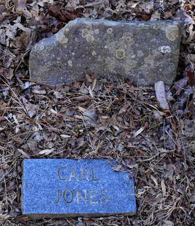 JONES, CARL - Sevier County, Tennessee | CARL JONES - Tennessee Gravestone Photos