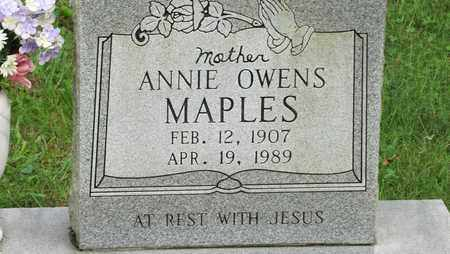 MAPLES, ANNIE - Sevier County, Tennessee   ANNIE MAPLES - Tennessee Gravestone Photos