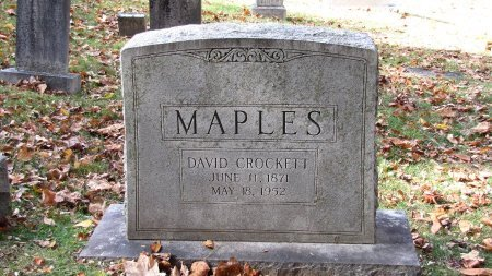 MAPLES, DAVID CROCKETT - Sevier County, Tennessee | DAVID CROCKETT MAPLES - Tennessee Gravestone Photos