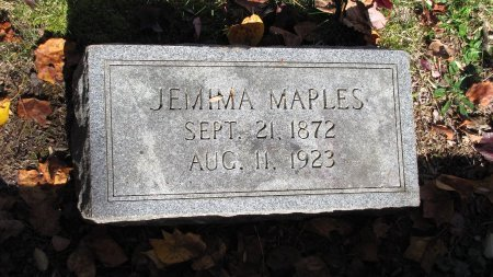 MAPLES, JEMIMA - Sevier County, Tennessee | JEMIMA MAPLES - Tennessee Gravestone Photos