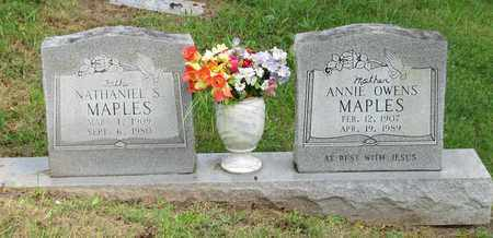 MAPLES, NATHANIEL S - Sevier County, Tennessee | NATHANIEL S MAPLES - Tennessee Gravestone Photos