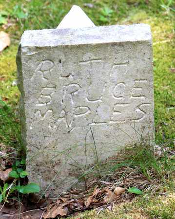 MAPLES, RUTH BRUCE - Sevier County, Tennessee   RUTH BRUCE MAPLES - Tennessee Gravestone Photos