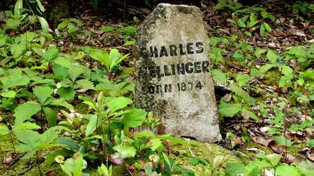 MELLINGER, CHARLES - Sevier County, Tennessee | CHARLES MELLINGER - Tennessee Gravestone Photos