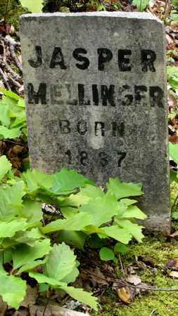 MELLINGER, JASPER - Sevier County, Tennessee | JASPER MELLINGER - Tennessee Gravestone Photos