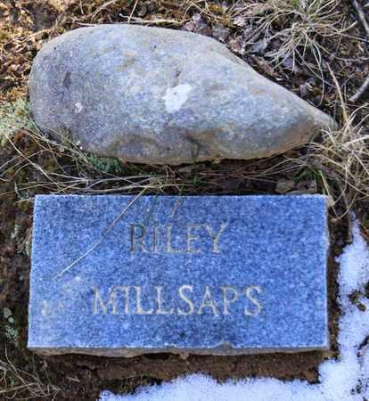 MILLSAPS, RILEY - Sevier County, Tennessee | RILEY MILLSAPS - Tennessee Gravestone Photos