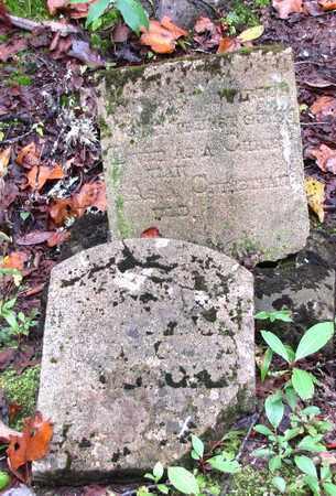 MORGAN, JOHN GEORGE WASHINGTON - Sevier County, Tennessee | JOHN GEORGE WASHINGTON MORGAN - Tennessee Gravestone Photos