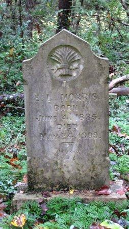 MORRIS, E. L. - Sevier County, Tennessee | E. L. MORRIS - Tennessee Gravestone Photos