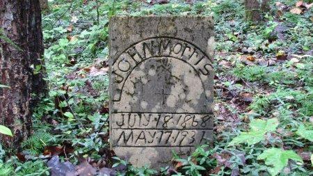 MORRIS, JOHN - Sevier County, Tennessee | JOHN MORRIS - Tennessee Gravestone Photos