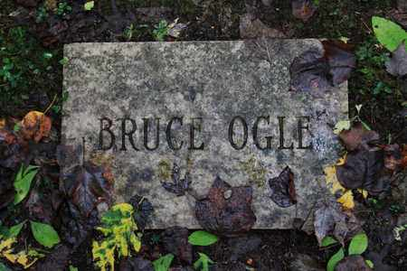 OGLE, BRUCE - Sevier County, Tennessee | BRUCE OGLE - Tennessee Gravestone Photos