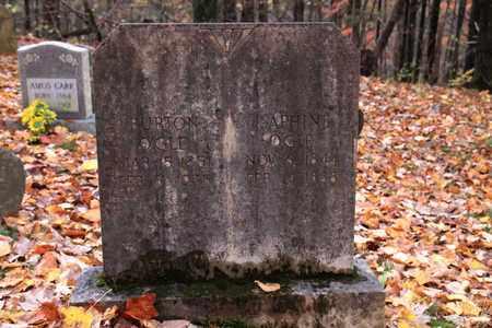 OGLE, BURTON - Sevier County, Tennessee   BURTON OGLE - Tennessee Gravestone Photos