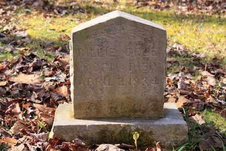 OGLE, BILLIE - Sevier County, Tennessee | BILLIE OGLE - Tennessee Gravestone Photos