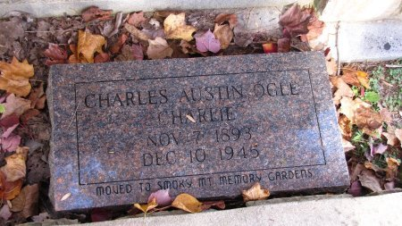 OGLE, CHARLES AUSTIN - Sevier County, Tennessee   CHARLES AUSTIN OGLE - Tennessee Gravestone Photos