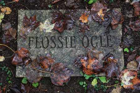 OGLE, FLOSSIE - Sevier County, Tennessee | FLOSSIE OGLE - Tennessee Gravestone Photos