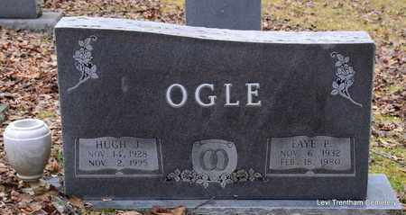 OGLE, FAYE P - Sevier County, Tennessee | FAYE P OGLE - Tennessee Gravestone Photos