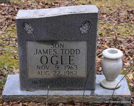 OGLE, JAMES TODD - Sevier County, Tennessee | JAMES TODD OGLE - Tennessee Gravestone Photos
