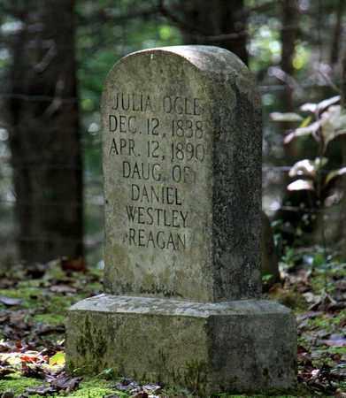 OGLE, JULIA ANN - Sevier County, Tennessee   JULIA ANN OGLE - Tennessee Gravestone Photos