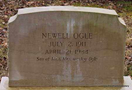 OGLE, NEWELL - Sevier County, Tennessee | NEWELL OGLE - Tennessee Gravestone Photos