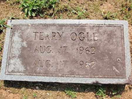 OGLE, TERRY - Sevier County, Tennessee | TERRY OGLE - Tennessee Gravestone Photos