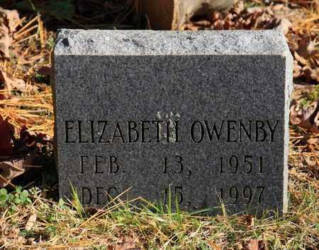 OWENBY, ELIZABETH - Sevier County, Tennessee   ELIZABETH OWENBY - Tennessee Gravestone Photos