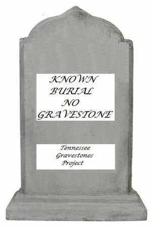 OWNBY, AARON - Sevier County, Tennessee | AARON OWNBY - Tennessee Gravestone Photos