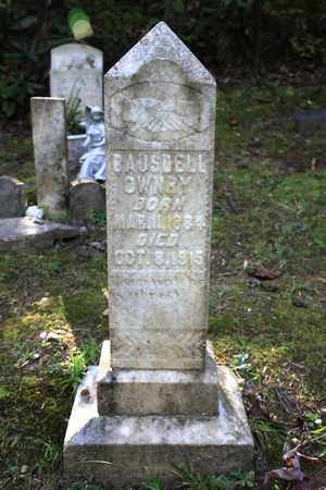 OWNBY, BAUSDELL - Sevier County, Tennessee | BAUSDELL OWNBY - Tennessee Gravestone Photos