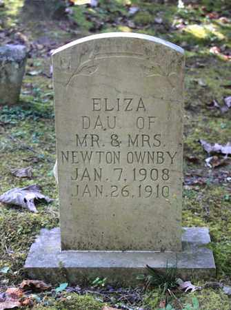 OWNBY, ELIZA - Sevier County, Tennessee | ELIZA OWNBY - Tennessee Gravestone Photos