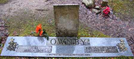 OWNBY, JOEL - Sevier County, Tennessee | JOEL OWNBY - Tennessee Gravestone Photos