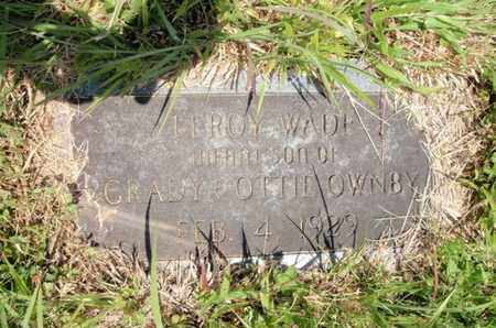 OWNBY, LEROY WADE - Sevier County, Tennessee | LEROY WADE OWNBY - Tennessee Gravestone Photos