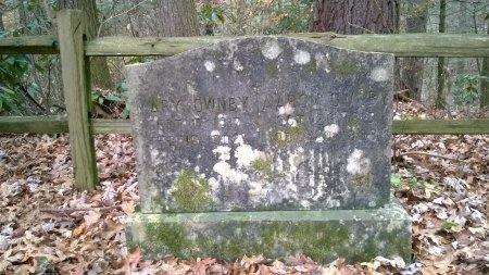 OWNBY, MARY - Sevier County, Tennessee | MARY OWNBY - Tennessee Gravestone Photos