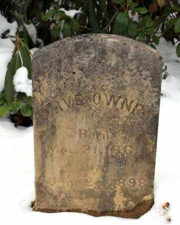 OWNBY, OLIVE EVANS - Sevier County, Tennessee | OLIVE EVANS OWNBY - Tennessee Gravestone Photos
