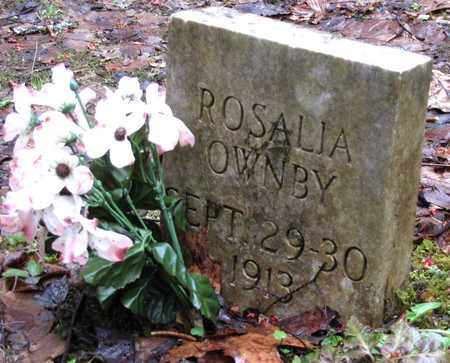 OWNBY, ROSALIA - Sevier County, Tennessee | ROSALIA OWNBY - Tennessee Gravestone Photos