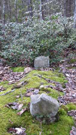 OWNBY, SARAH - Sevier County, Tennessee | SARAH OWNBY - Tennessee Gravestone Photos