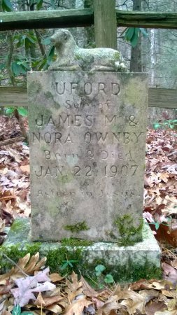 OWNBY, UFORD - Sevier County, Tennessee | UFORD OWNBY - Tennessee Gravestone Photos