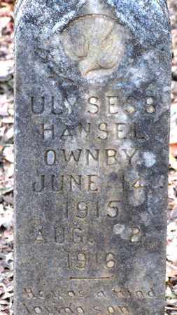 OWNBY, ULYSESS HANSEL - Sevier County, Tennessee   ULYSESS HANSEL OWNBY - Tennessee Gravestone Photos