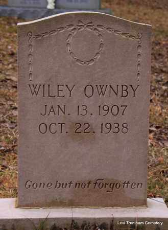 OWNBY, WILEY - Sevier County, Tennessee | WILEY OWNBY - Tennessee Gravestone Photos