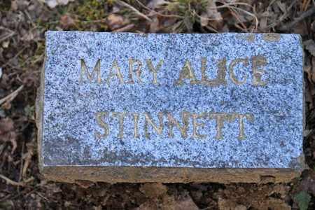STINNETT, MARY ALICE - Sevier County, Tennessee | MARY ALICE STINNETT - Tennessee Gravestone Photos