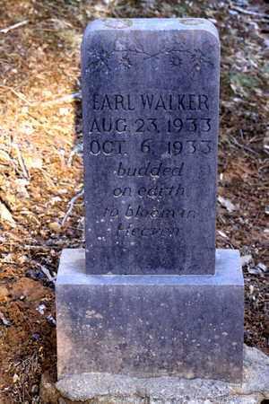 WALKER, EARL - Sevier County, Tennessee | EARL WALKER - Tennessee Gravestone Photos
